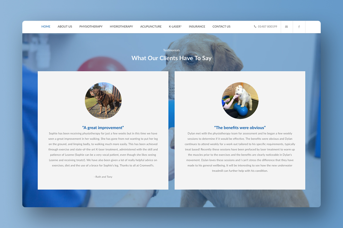 Veterinary Web Design Huntingdon