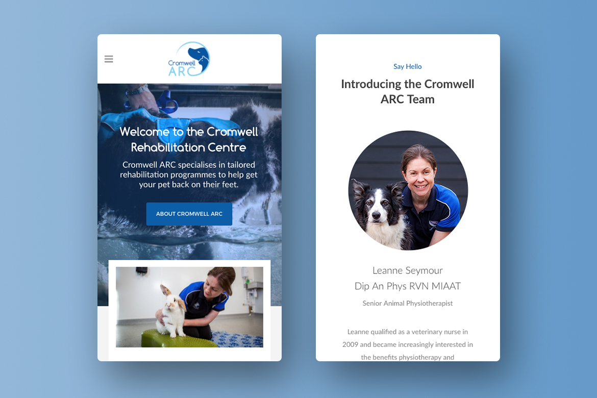 Veterinary Web Design Responsive